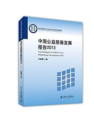 中国公益慈善发展报告2013.pdf