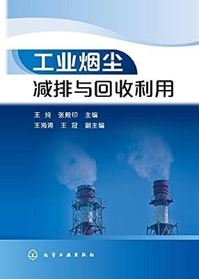 工业烟尘减排与回收利用.pdf
