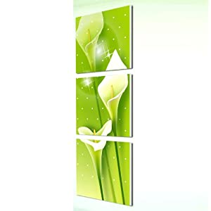 美时美刻 简洁马蹄莲装饰画玄头竖挂无框画客厅版画画
