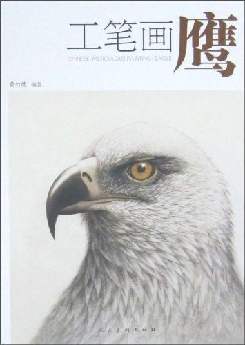 工笔画鹰图片