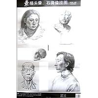 素描头像石膏像临摹挂图图片
