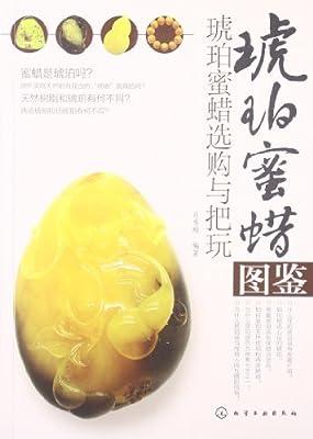 琥珀蜜蜡图鉴:琥珀蜜蜡选购与把玩.pdf