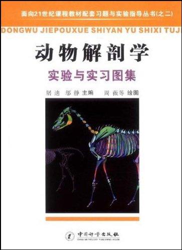 动物解剖学实验与实习图集图片