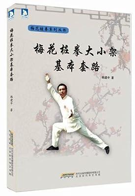 梅花桩拳大小架基本套路.pdf