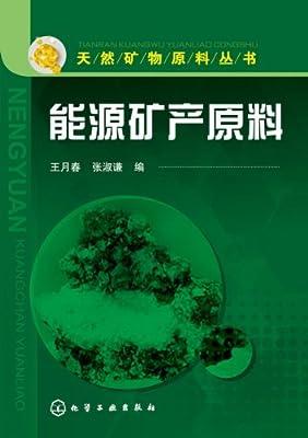 能源矿产原料.pdf