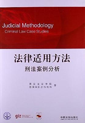 法律适用方法:刑法案例分析.pdf