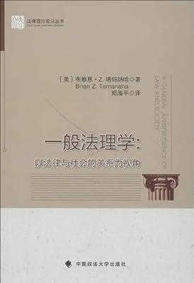 一般法理学:以法律与社会的关系为视角.pdf