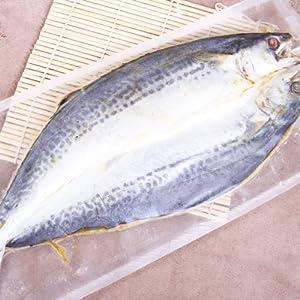 薛记 青岛特产 正宗深海产品海鲜干货 野生鲅鱼干马鲛鱼干 海鱼干咸鱼