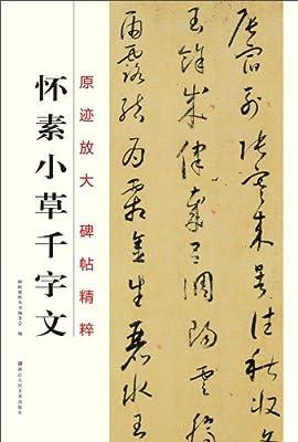 原迹放大碑帖精粹:怀素小草千字文.pdf