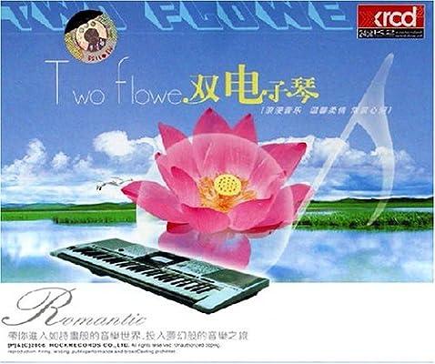 双电子琴(3cd)图片