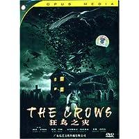 狂鸟之灾 DVD