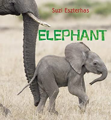 Elephant.pdf