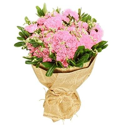 康乃馨粉红花束(33枝)(厂商带货直送)