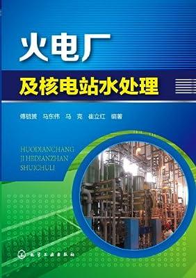 火电厂及核电站水处理.pdf