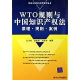 wto规则与中国知识产权法(原理规则案例)/民商法原理与应用研究丛书