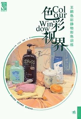 色彩视界:王鹏色彩静物形色训练.pdf