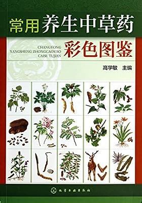 常用养生中草药彩色图鉴.pdf