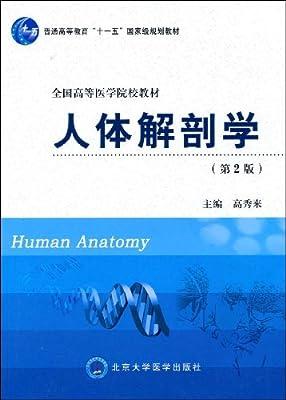 人体解剖学.pdf