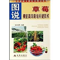 http://ec4.images-amazon.com/images/I/515sQtBK9BL._AA200_.jpg