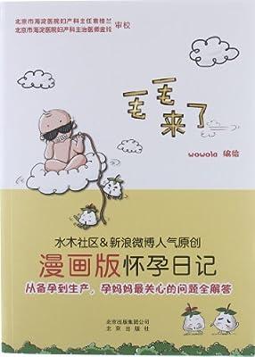毛毛来了:怀孕日记.pdf
