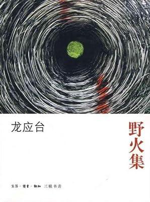 野火集:二十年纪念版.pdf