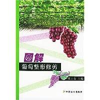 http://ec4.images-amazon.com/images/I/518IsOmHM%2BL._AA200_.jpg
