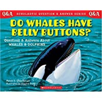 Scholastic Q & A: Do Whales Have Belly Buttons?