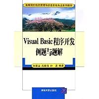 Visual Basic程序开发例题与题解
