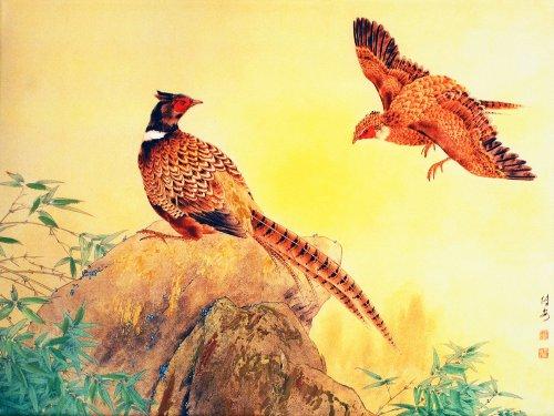 香颂风无框油画-中国工笔重彩画系列之自由翱翔(jd13253)40*30cm图片