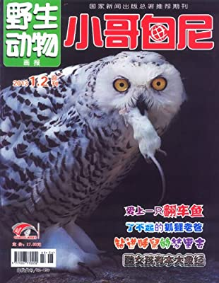 小哥白尼野生动物2013年01-03月.pdf