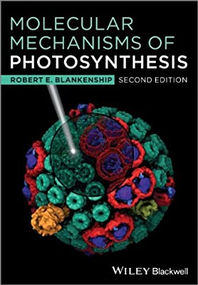Molecular Mechanisms of Photosynthesis.pdf