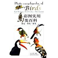 http://ec4.images-amazon.com/images/I/519dzzManVL._AA200_.jpg