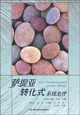 萨提亚转化式系统治疗.pdf