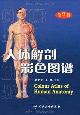 人体解剖彩色图谱.pdf