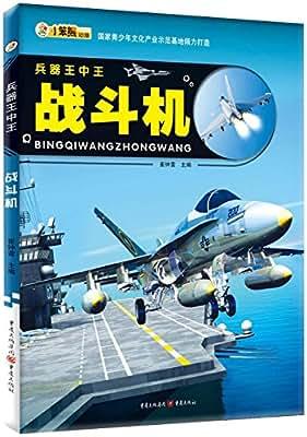 兵器王中王:战斗机.pdf