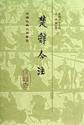 中国古典文学丛书:楚辞今注.pdf