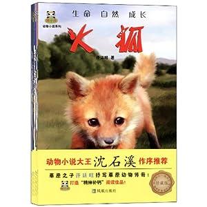 倔小孩动物小说系列(套装共6册)(珍藏版)