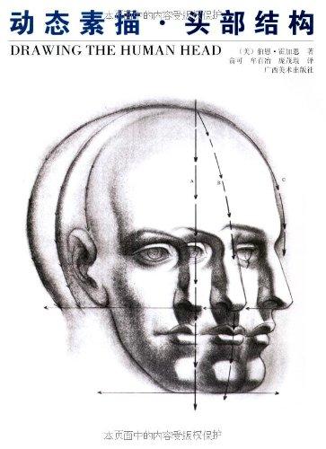 动态素描:头部结构图片/大图欣赏 - 智购网网购大全