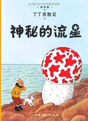 丁丁历险记•神秘的流星.pdf