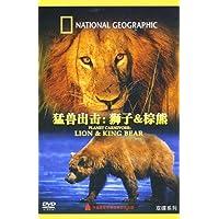 猛兽出击:狮子&棕熊