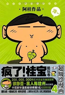 《疯了!桂宝•酷玩卷》.pdf