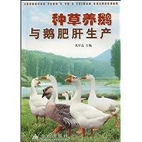 http://ec4.images-amazon.com/images/I/51Euq-ufQQL._AA200_.jpg