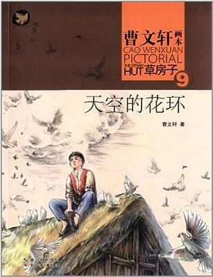 曹文轩画本·草房子9:天空的花环