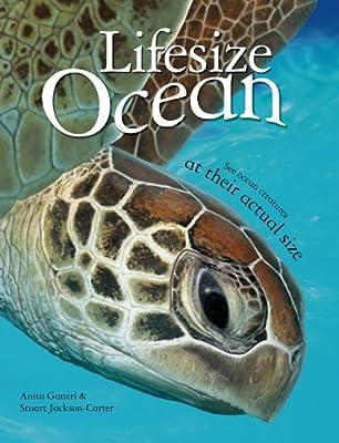 Lifesize: Ocean.pdf