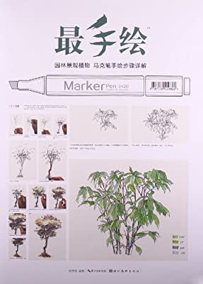 最手绘:园林景观植物马克笔手绘步骤详解