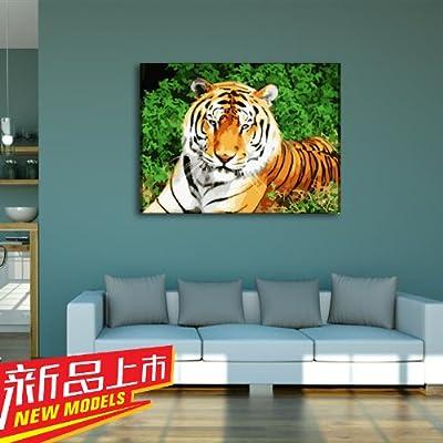 佳彩天颜 数字油画diy 客厅风景动物手绘装饰画老虎 森林之王 森林之