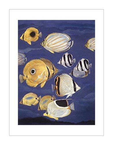 画|自然景观装饰画|鱼|装饰艺术环境|动物学|风景