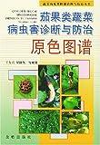 茄果类蔬菜病虫害诊断与防治原色图谱-图片