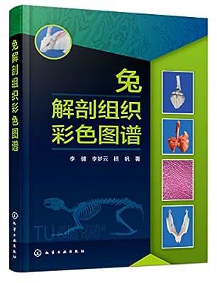 兔解剖组织彩色图谱.pdf