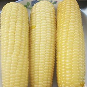 大瀛 白糯玉米 2kg
